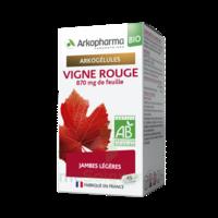 Arkogélules Vigne Rouge Bio Gélules Fl/45 à LE-TOUVET