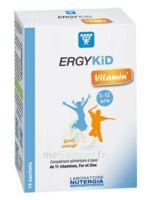 Ergykid Vitamin' Poudre Solution Buvable 14 Sachets à LE-TOUVET
