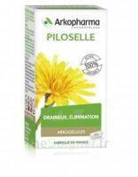 Arkogélules Piloselle Gélules Fl/45 à LE-TOUVET