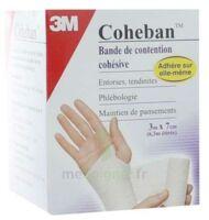 Coheban, Blanc 3 M X 7 Cm à LE-TOUVET