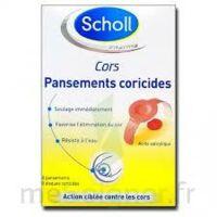 Scholl Pansements Coricides Cors à LE-TOUVET