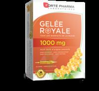 Forte Pharma Gelée Royale 1000 Mg Solution Buvable 20 Ampoules/10ml à LE-TOUVET
