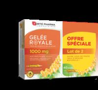 Forte Pharma Gelée Royale 1000 Mg Solution Buvable 2*b/20 Ampoules/10ml à LE-TOUVET
