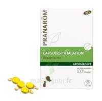 Aromaforce Caps Inhalation Bio B/15 à LE-TOUVET